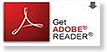 Download Adobe Reader from Adobe.com